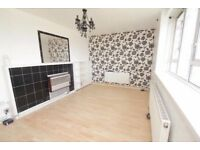 2/3 BED FLAT IN STEPNEY GREEN