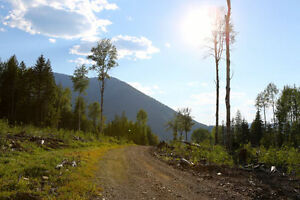 163 Acres in the beautiful West Kootenays (Salmo). Deal