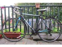 Road Bike - Trek 1.1 54cm - Back Rack and Raceblades mudgaurds