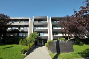 2 Bdrm available at 1204 Yates Street, Victoria