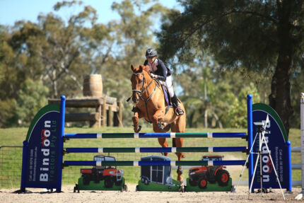Young School Master / Eventer Bullsbrook Swan Area Preview