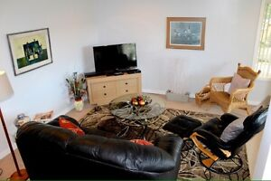 BEAUTIFUL GARDEN LEVEL FULLY FURNISHED SUITE IN EAST COURTENAY