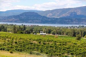 ACREAGE SHOWCASING THE BEST THAT THE OKANAGAN HAS TO OFFER!