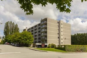 1 Bdrm available at 544 Sydney Avenue, Coquitlam