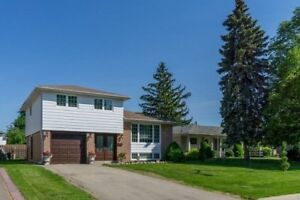 Fully Renovated 4 Bedroom Sidesplit With Many New Upgrades!