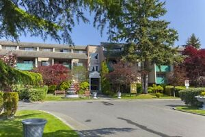 Bachelor available at 10951 Mortfield Road, Richmond