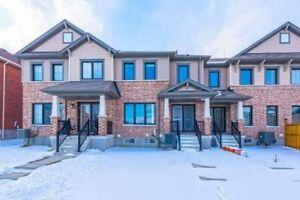 Perfect For 1st Time Buyers Or Investors, 3 Bed 3 Bath Freehold!