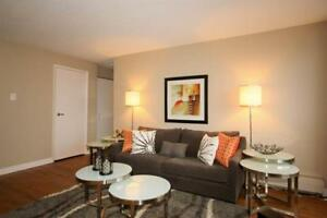 Right Downtown! Large suites-Near shopping dining & university!