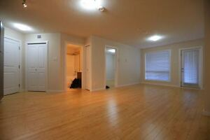 Central North side Edmonton 2 bedrooms condo for rent