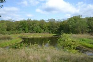 Fantastic Building Lot with Access to Bobs Lake!