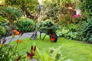 Lawn-mowing, Gardening, Artificial Lawn, Tree Pruning & Handyman Prospect Prospect Area Preview
