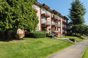 1 Bdrm available at 333 Tenth Street, New Westminster