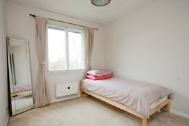 Room to Let / Woking