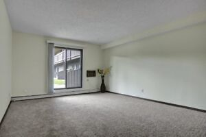 Top Floor 1 Bed! New Carpets! East Side! Bright & Sunny!