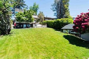 Basement Suite for Rent in Central West Vancouver North Shore Greater Vancouver Area image 4