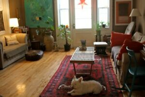 Roommate wanted for big & cozy Outremont/Mile-end apt - Jan 1st