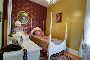 Nice Furnished Room in St. Thomas. Available November 1st.