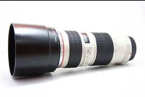 Canon 70-200L F4 non IS Gray Palmerston Area Preview