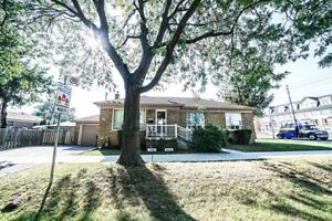 Toronto Hot Property:Corner 3+2 Br Detached Home On huge Lot.
