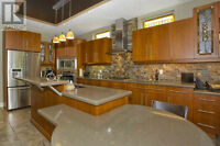 Entire Kitchen including top of the line appliances and granite