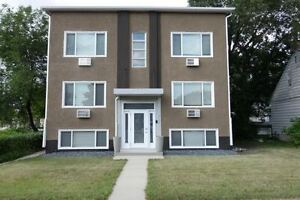 Beautifully Renovated 1 Bedroom in Saint Boniface