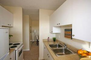 1 Bedroom Apartment - Quiet Cul-De-Sac in Westdale!