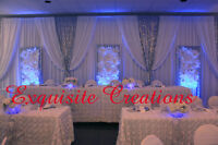Largest selection of fabric backdrops