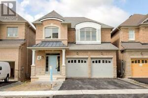 4 WALTER TUNNY CRES East Gwillimbury, Ontario