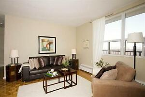 1 BD - Renovated-Gym-Outdoor Pool! One Month Parking FREE!