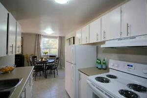 Convenient! Bright Renovated Suites-Spacious Kitchens-Pool!