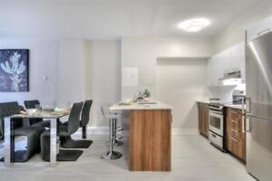 Studio recently renovated! Downtown Montreal near Concordia