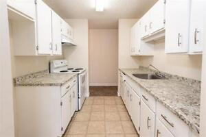 The Village - Starting $1540 - 3 Bed - Large Suites