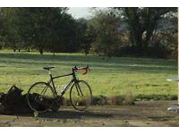 Emonda SL 500oclv/Ultegra/XXX carbon bars/Garmin mount/upgraded wheels/not Specialized or Tarmac