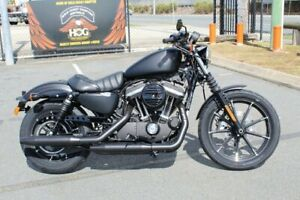 2019 Harley-Davidson XL883N Iron 883 Nerang Gold Coast West Preview