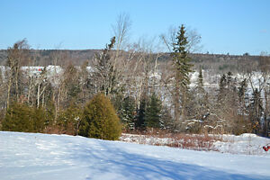 Land with 300' of waterfront in Prince William