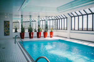 Luxury 3 1/2 condo to sublet for December - Pool Sauna Gym