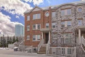 South Facing Corner Unit 2 Bed / 2 Bath | High Park-Swansea