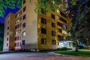 Large and Sunny Apartments on Wellington Crescent