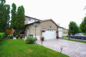 With Legal 2Br Bsmt Apartment With Separate Entrance