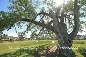 COTTONWOOD LOTS - CHOOSE YOUR OWN BUILDER!