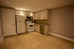 Fully renovated 1-bedroom unit (avail August 1)