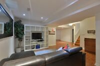 One bedroom + Large Living/Dining Area