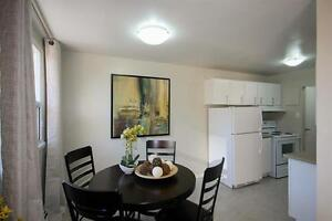 Convenient! Bright Renovated Suites-Spacious Kitchens-Pool! Cambridge Kitchener Area image 3