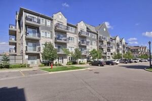 Bright And Spacious - Gorgeous Rare Find 2 Bedroom