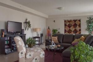 Furnished 2  Bedroom Sublet In Clayton Park West