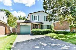NEWMARKET BASEMENT APARTMENT FOR LEASE