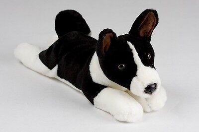 Stuff Basenji Puppy/Blk/white