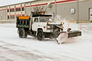Two Boys and a Snow Blower Best Choice Oakville Snow Removal Oakville / Halton Region Toronto (GTA) image 7