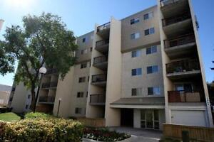 Fully renovated 1+Den avail ASAP!!! Great looking suite!!!