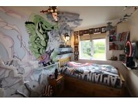 Mural Artist / Custom murals / Fantasy Murals / Bedroom wall Murals / Children's Bedroom murals